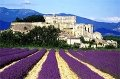 provence16